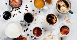 コーヒーの生物学