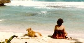 Honde ken hart: herken outentieke liefde